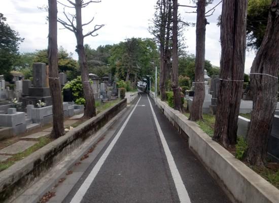 染井霊園1