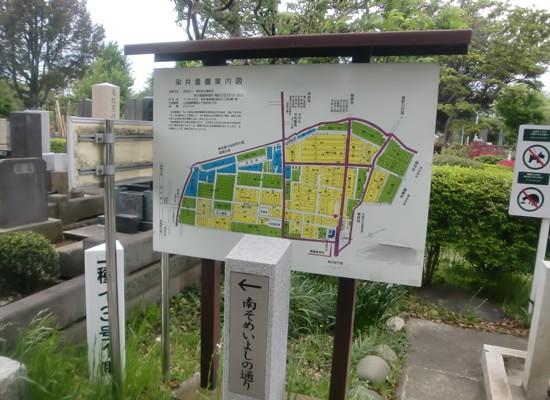 染井霊園2