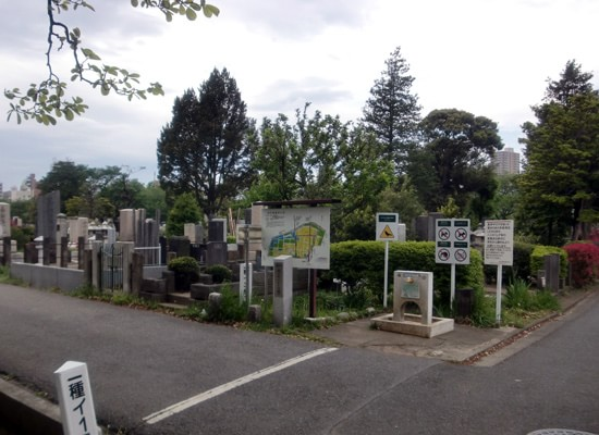 染井霊園3