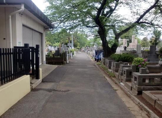 染井霊園5