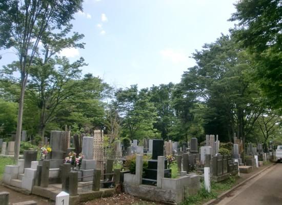 雑司ヶ谷霊園3