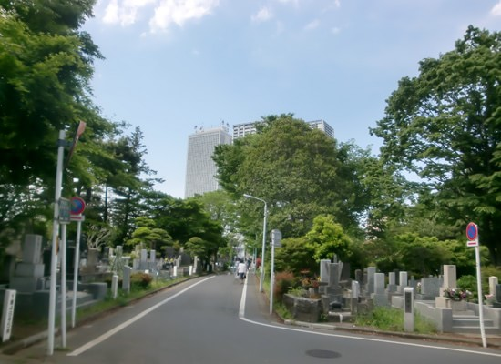 雑司ヶ谷霊園5
