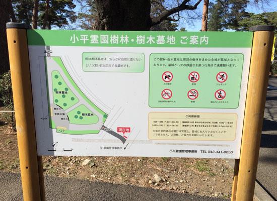 小平霊園4