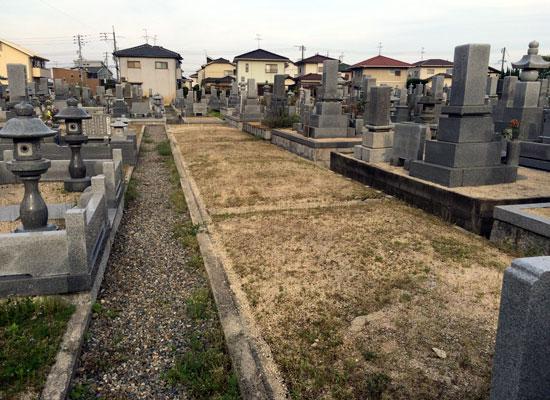 今保墓地3