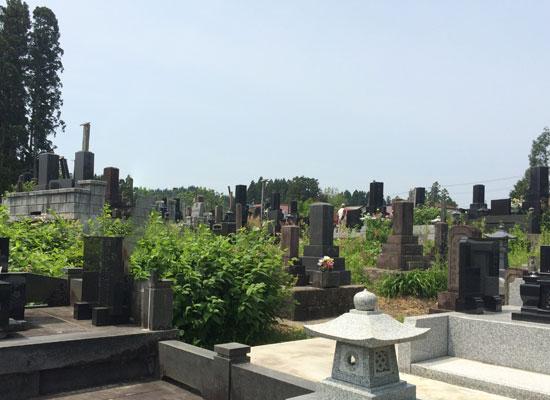 南外金屋墓園3