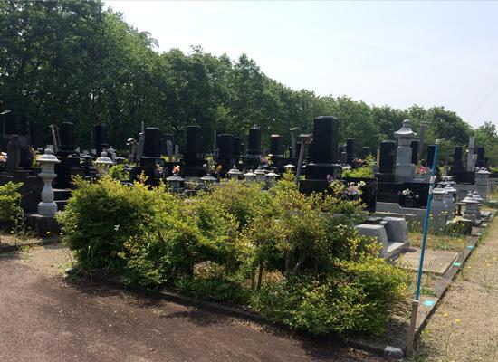 協和苅谷沢墓園4