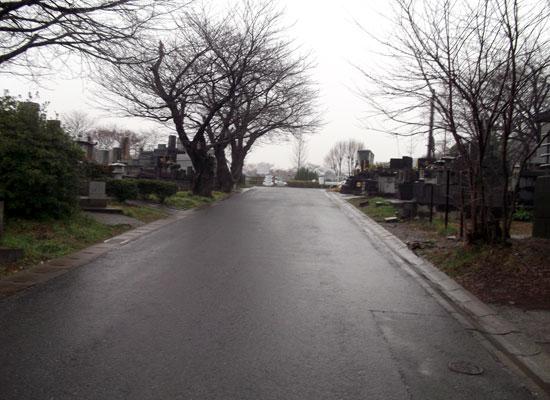 熊本市営小峰墓地2