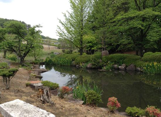 中山霊園5