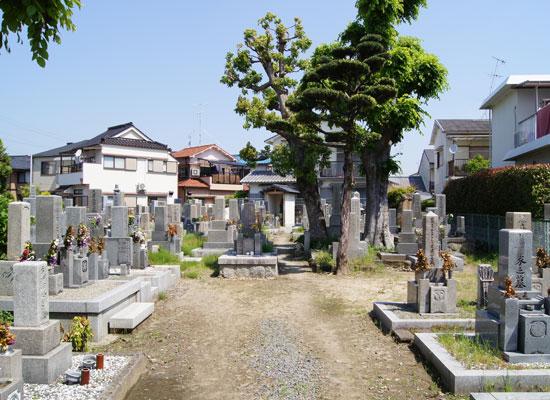 春日丘墓地1