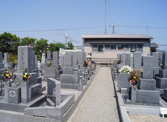 大鹿墓地-2