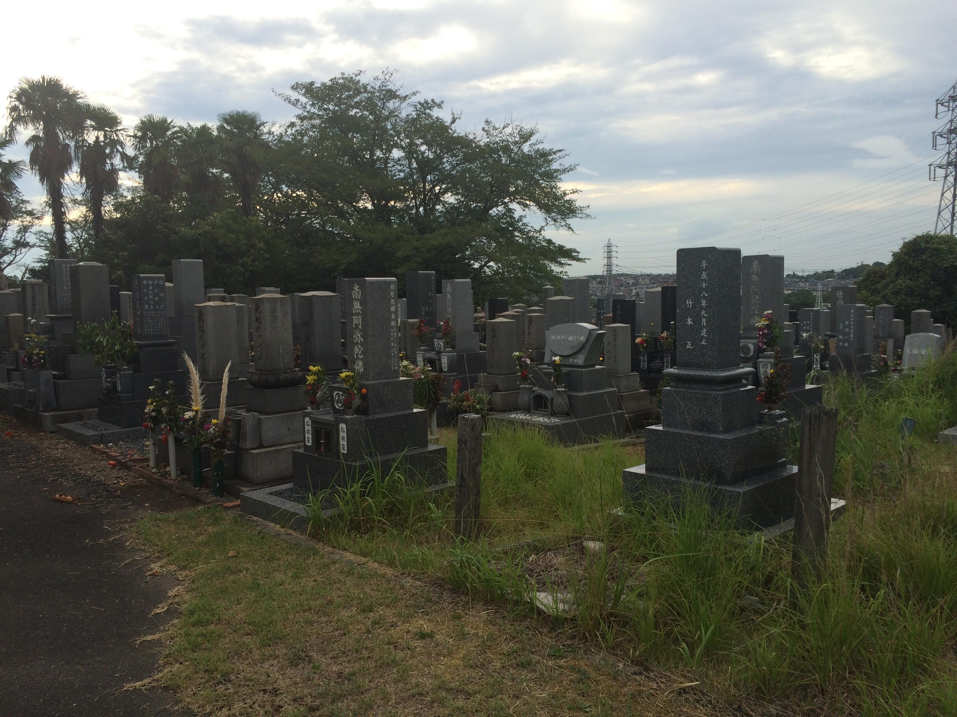 北部墓地全景