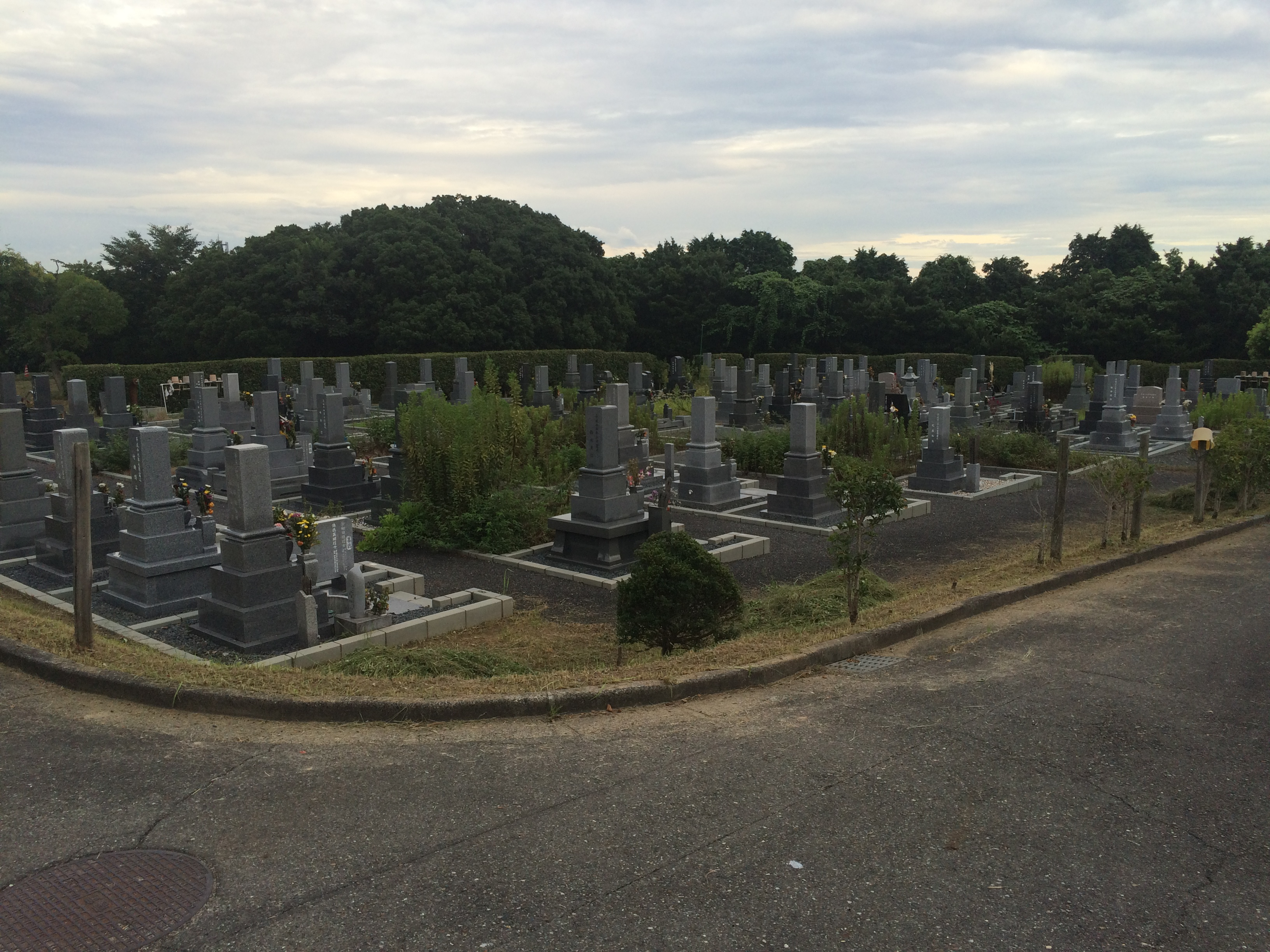 高坂墓園全景
